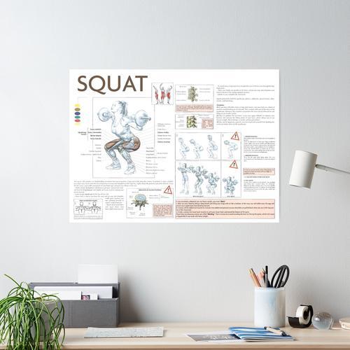 Squat - Übungsdiagramm Poster