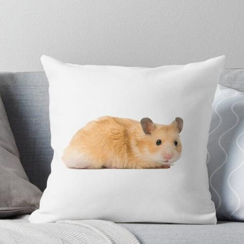 Hamster Kissen