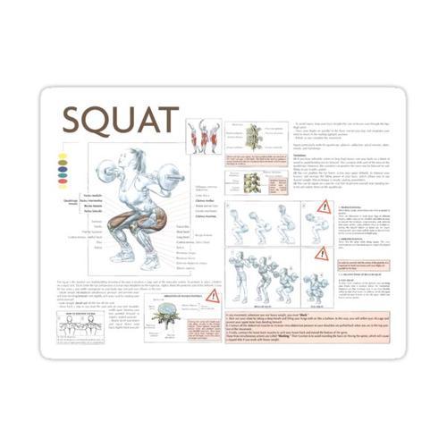 Squat - Übungsdiagramm Sticker