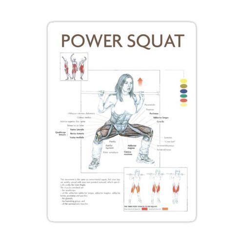 Power Squat - Übungsdiagramm Sticker