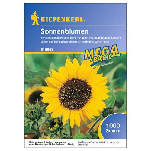 Sonnenblumen, 1 kg-Megapack
