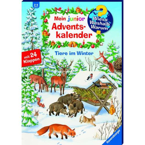 Mein WWW junior Adventskalender – Tiere im Winter, bunt