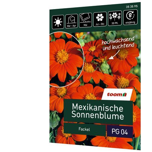 toom Mexikanische Sonnenblume 'Fackel'