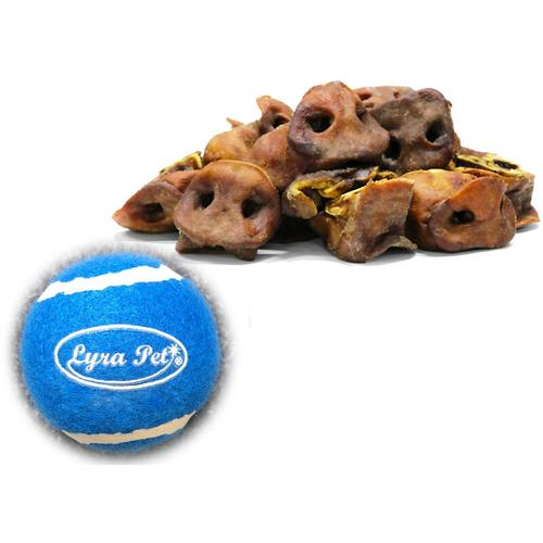 5 kg ® Schweinenasen + Tennis Ball - Lyra Pet