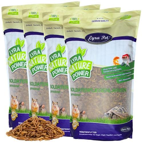 10 kg ® Soldatenfliegenlarven - Lyra Pet
