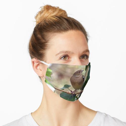 Buchfink Maske