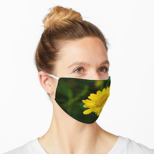 Gelbe Blume der Färberkamille Maske