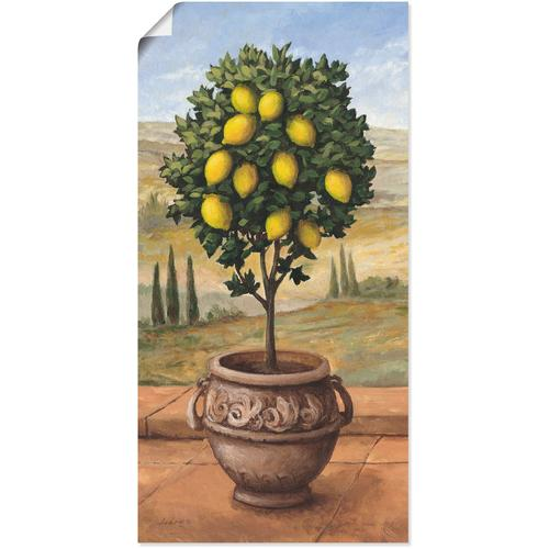 Artland Wandbild Zitronenbaum, Bäume, (1 St.) beige Kunstdrucke Bilder Bilderrahmen Wohnaccessoires