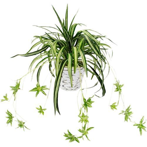 Kunstpflanze »Wasserlilie« Wasserlilie, I.GE.A., Höhe 35 cm, im Übertopf