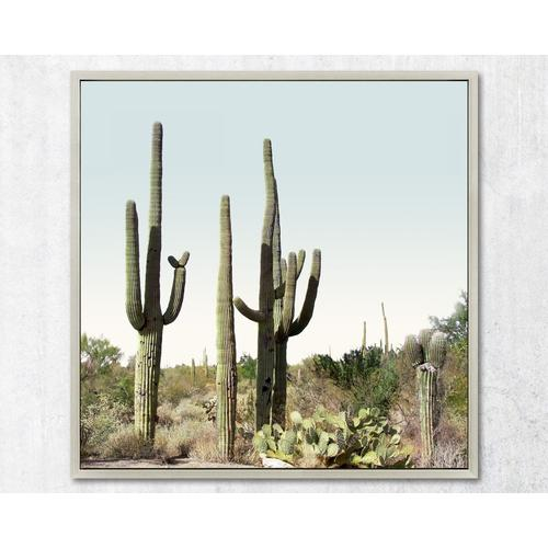 """La Casa Wandbild gerahmt """"Kakteen Wüste"""" 80x80 cm 182220"""