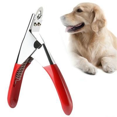 Coupe-griffes pour animaux de compagnie, ciseaux à ongles et orteils de chien de chat, outil de