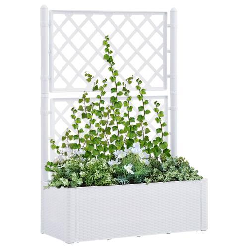 vidaXL Garten-Hochbeet mit Spalier und Selbstbewässerungssystem Weiß
