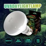 Lampe UVA + UVB pour Reptile, am...