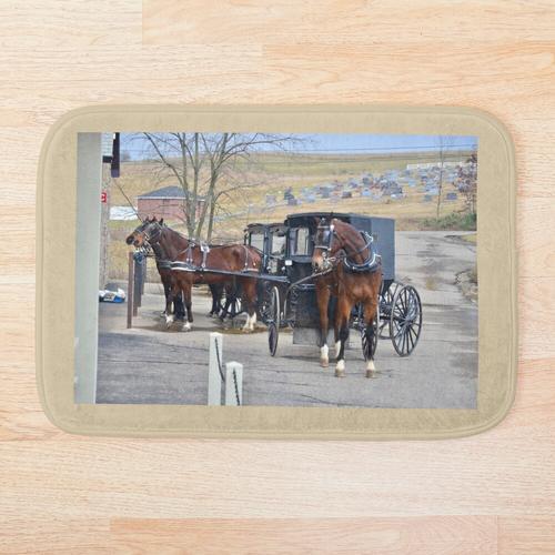 Buggy-Parken im Amish-Land, Ohio. Badematte