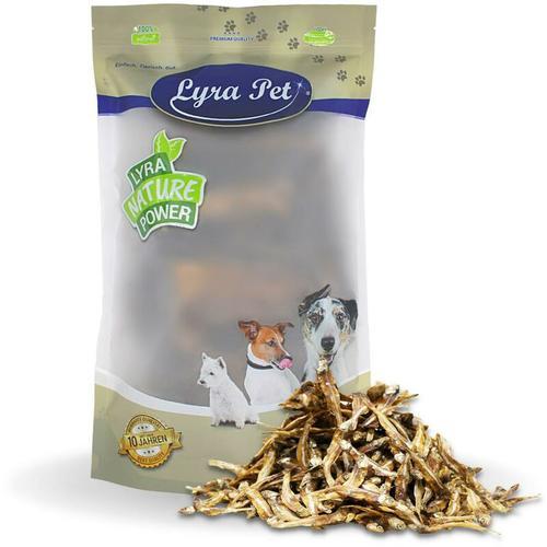 5 kg ® Kleine Fische - Lyra Pet
