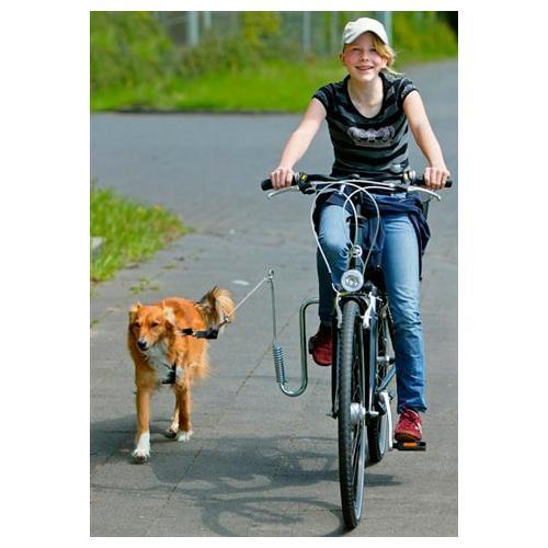HEIM Fahrradleine, mit Fahrradhalter für Hunde bis 20 kg silberfarben Rad-Ausrüstung Radsport Sportarten Fahrradleine