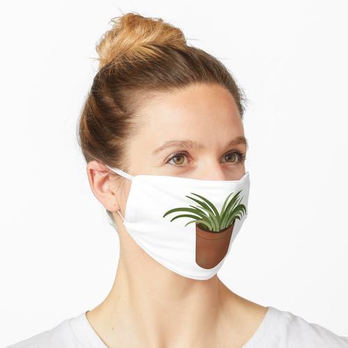 Topfpflanze Eins Maske