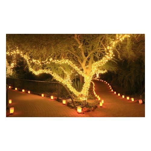 Lichterkette: 100 LEDs/1