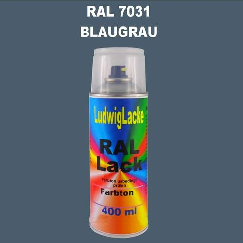 RAL 7031 BLAUGRAU Seidenmatt 400 ml 1K Spray