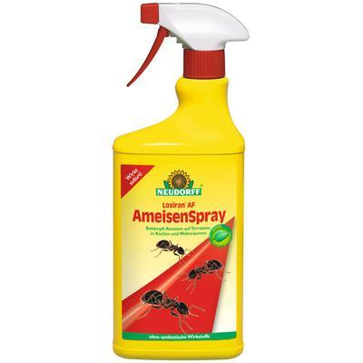 Neudorff Ameisenmittel Loxiran A...