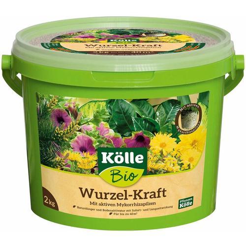 Kölle Bio Wurzel-Kraft, 2 kg Eimer