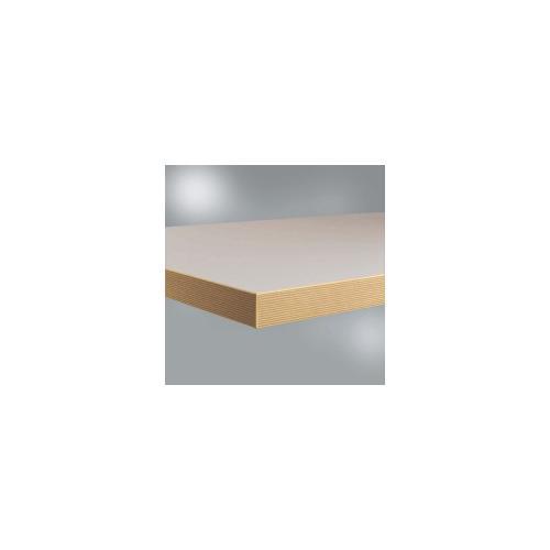 Werkbankplatte Linoleum Nickelgrau, BxTxH = 1250 x 700 x 40 mm