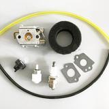 Kit carburateur pour Walbro WT-6...