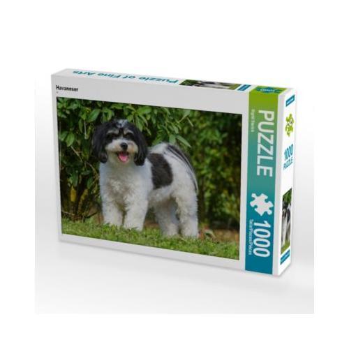 Havaneser Foto-Puzzle Bild von SiSta-Tierfoto Puzzle