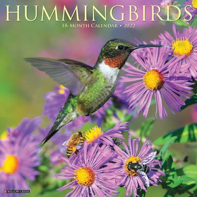 Willow Creek Press Hummingbirds 2022 Wall Calendar