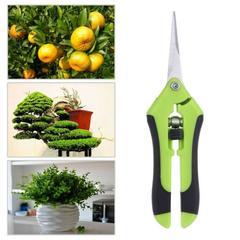 Sécateurs de bonsaï en métal, ciseaux de jardinage, outils de jardin, outil de taille, coupe à la