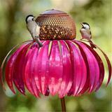Mangeoire à oiseaux rose pour le...