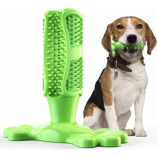 Hundezahnbürste Hundespielzeug Kauspielzeug Gummi Zahnreinigung Hunde Zahnbürste Stick Langlebig