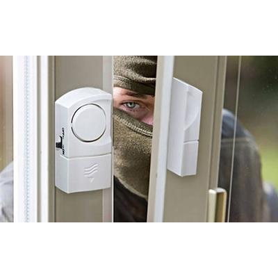 Tür- und Fenster-Alarm: 1