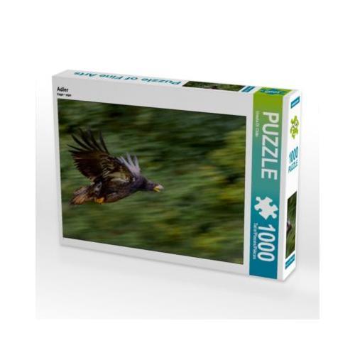 Adler Foto-Puzzle Bild von PuraVida Puzzle