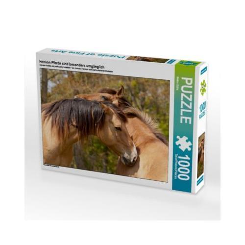 Henson Pferde sind besonders umgänglich Foto-Puzzle Bild von Meike Bölts Puzzle