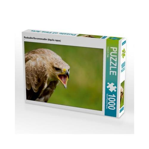 Raubadler/Savannenadler (Aquila rapax) Foto-Puzzle Bild von PuraVida Puzzle