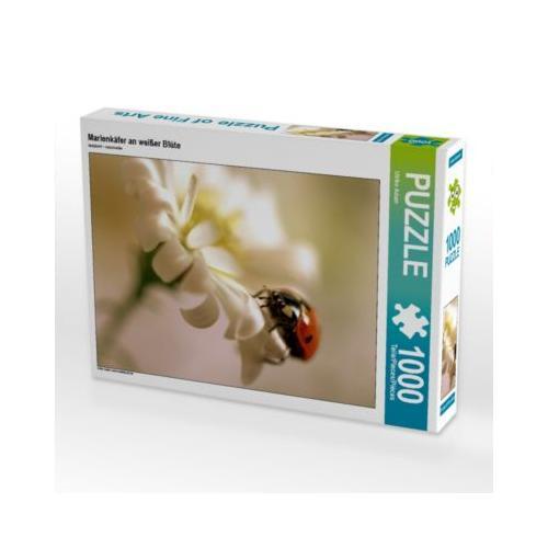 Marienkäfer an weißer Blüte Foto-Puzzle Bild von Fotokunst Ulrike Adam Puzzle