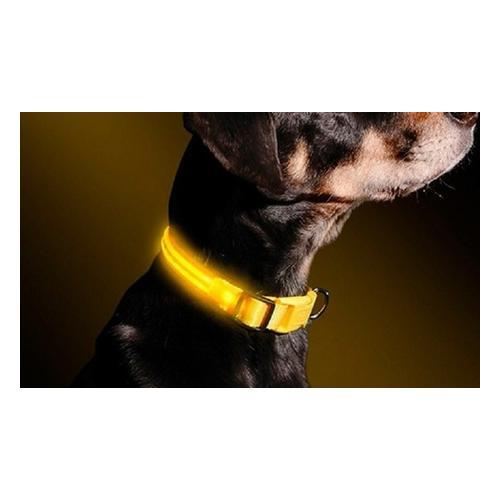 LED-Halsband für Hunde: S
