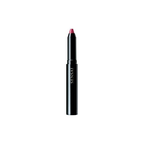 SENSAI Make-up Colours Silky Design Rouge Nr. DR03 Hiiro 1,20 g