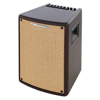 Ibanez T80II Acoustic Combo