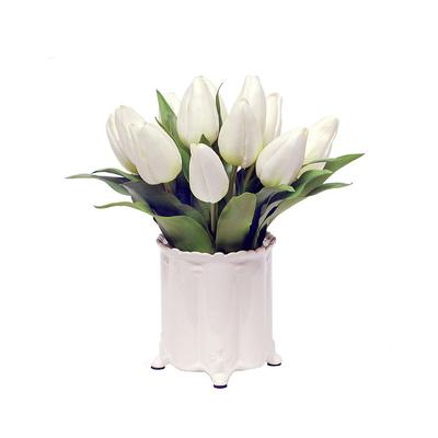 Tulip in Canister Vase - Frontgate