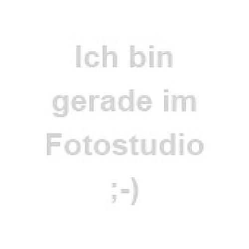 Samsonite Pro-DLX 5 Business Rucksack 41 cm Laptopfach magnetic grey