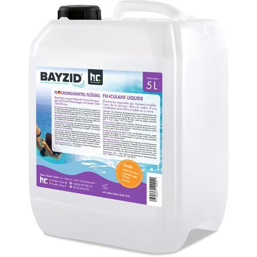 Höfer Chemie - 2 x 5 Liter BAYZID® Flockungsmittel flüssig für Pools