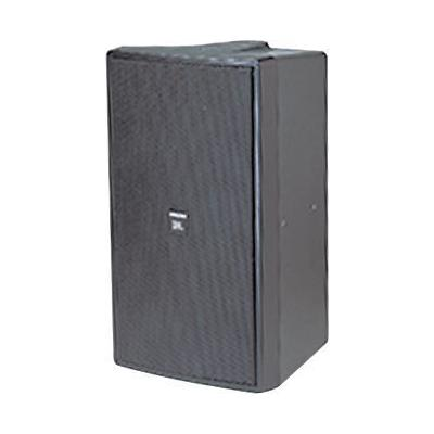 JBL C29AV-1 Control 2-Way Indoor/Outdoor Speaker - Black